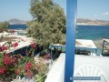 Milos - Apollonia - Pension Apollon